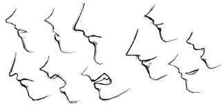 Drawn profile detailed At stick and proportions of