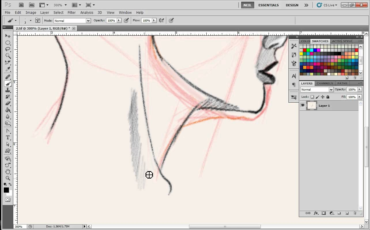 Drawn profile draw Drawing Drawing Face Profile Lessons