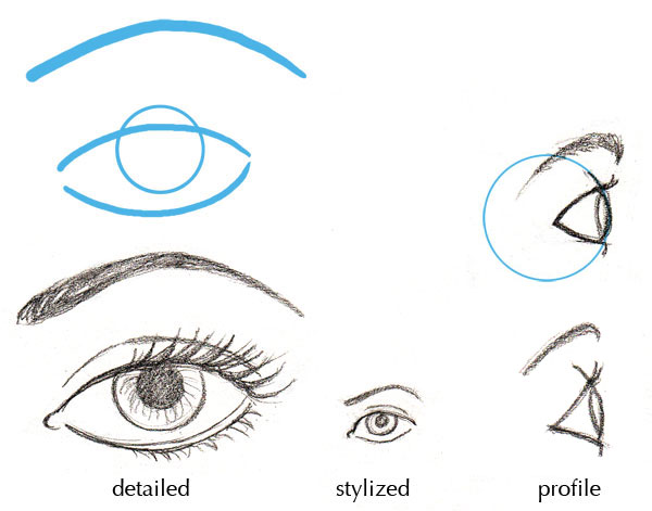 Drawn profile eye Fundamentals: Basics Anatomy of Details