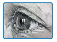Drawn profile eye A profile from view How