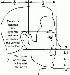Drawn profile face proportion Face lesson of profile Side