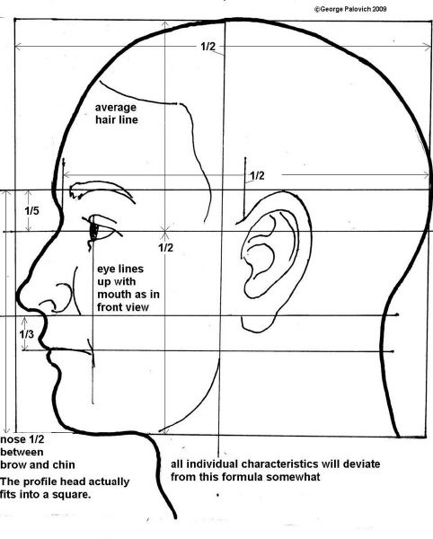 Drawn profile face proportion Proportions ideas for 25+ the