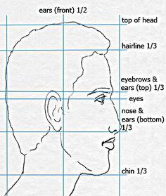 Drawn profile face proportion Basic  Profile Drawing human