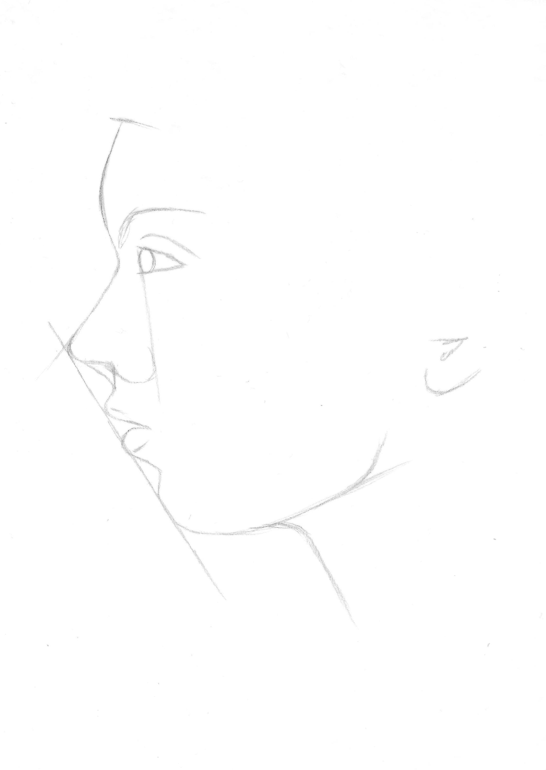 Drawn profile hairline Drawing lengths Nicole's eye Roaring
