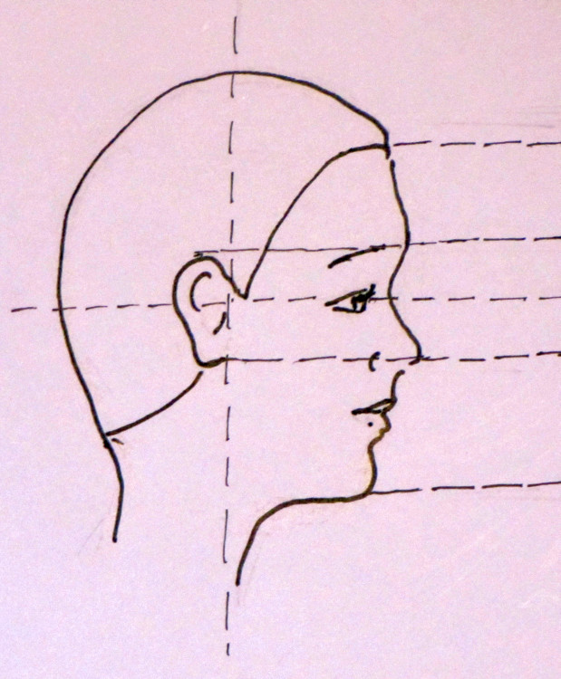Drawn profile hairline Above hair chin nose face