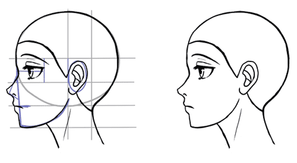 Drawn profile hairline In profile Side Manga to