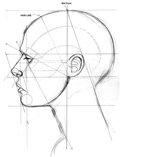 Drawn profile human profile человека on Side drawing научиться