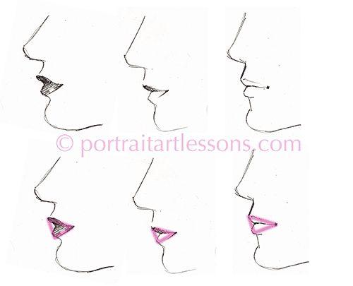 Drawn profile human profile Design Anatomy on 124 images