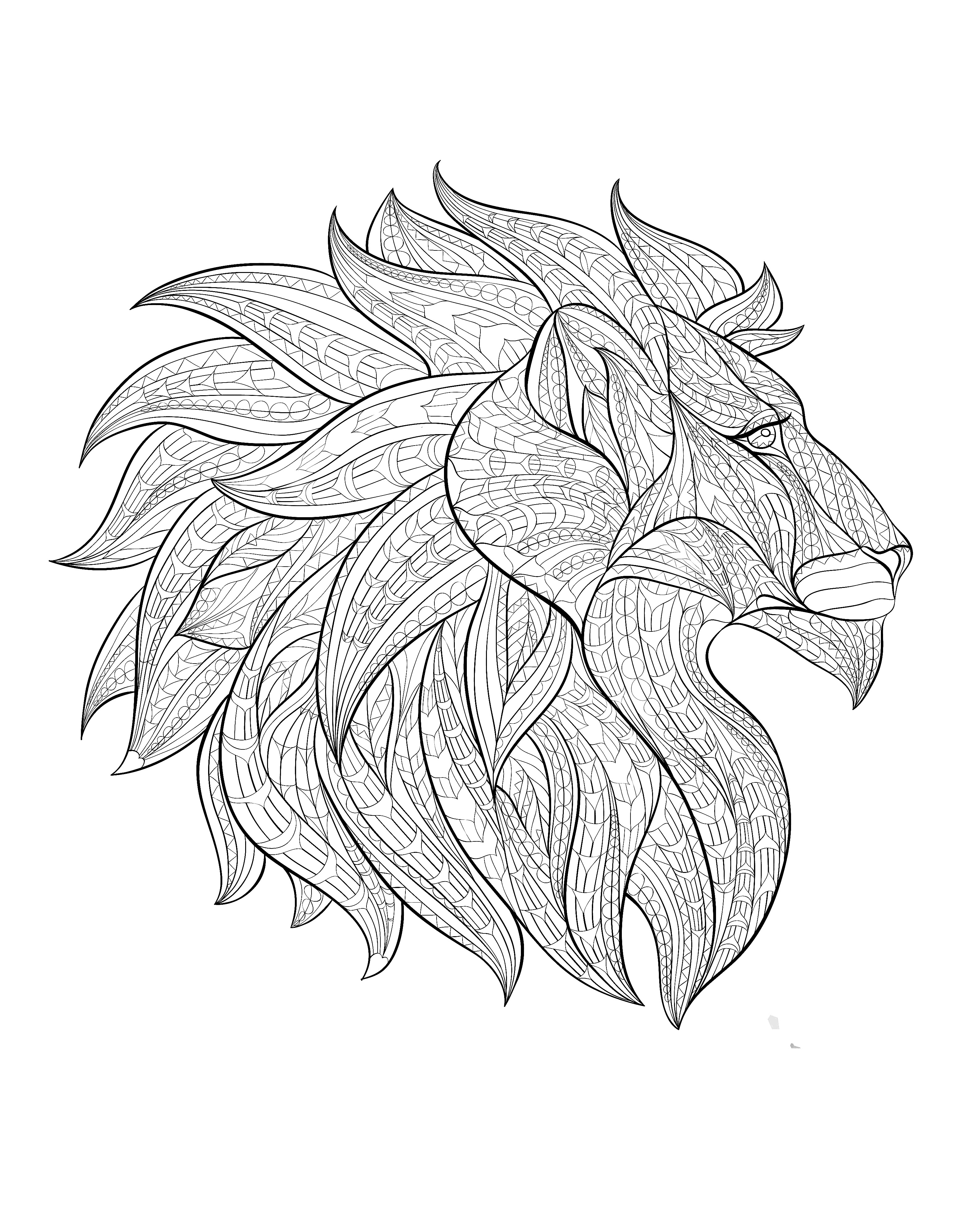 Drawn profile lion Pages for head adults print
