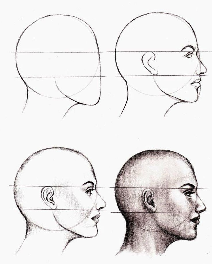 Drawn profile male face Step – a Step ideas