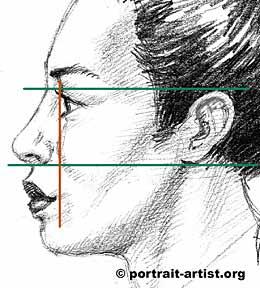 Drawn profile mouth  the profile tutorial profile