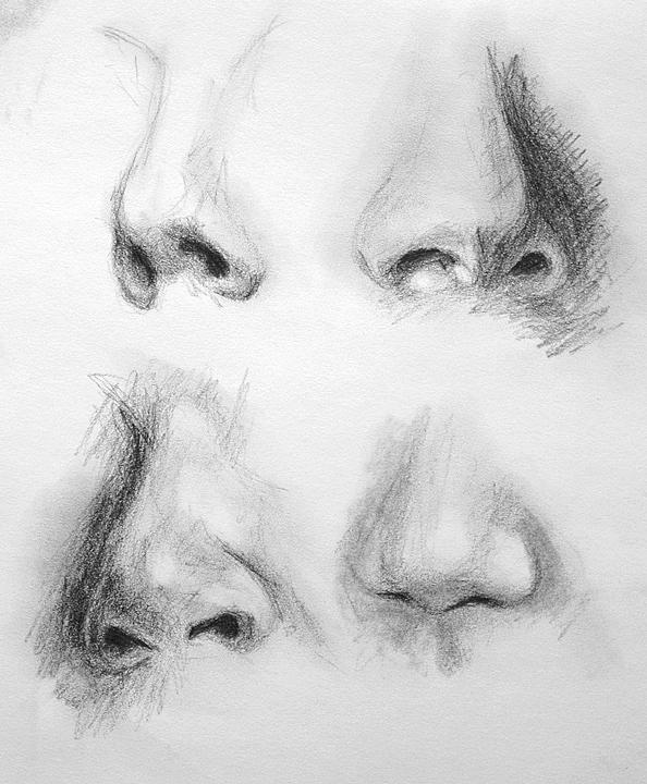 Drawn profile nose Noses Drawing Pinterest in Everything
