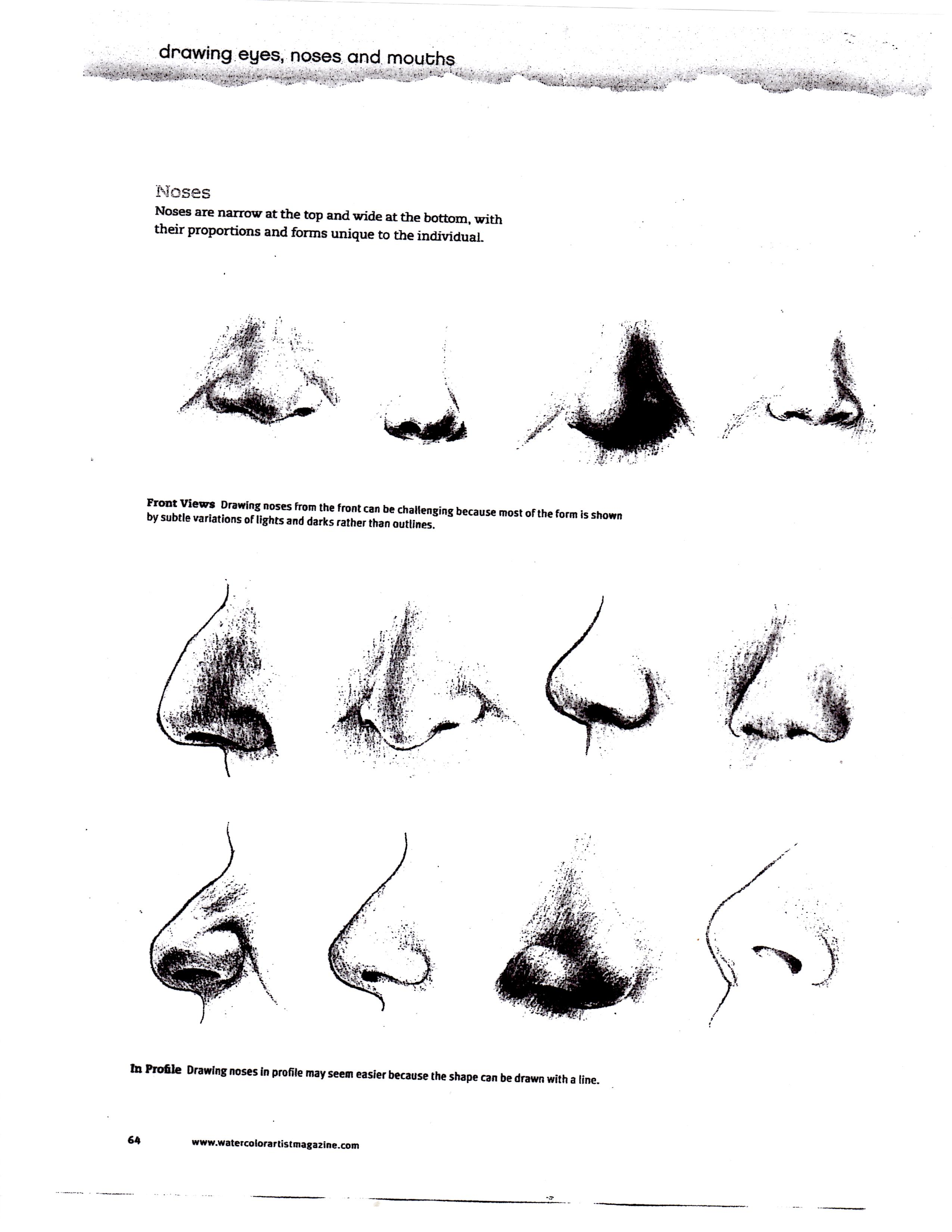 Drawn profile nose WHAT IN Page TO ArtWorks