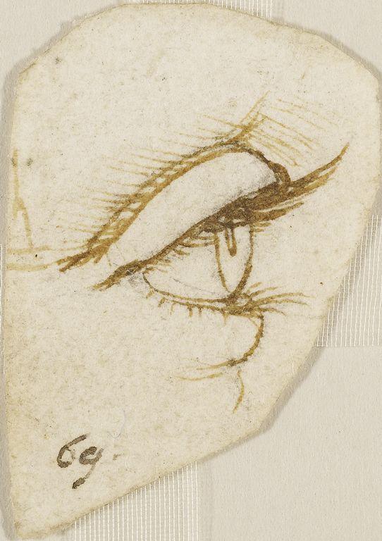 Drawn profile pen An Leonardo in on profile