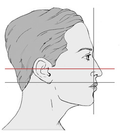 Drawn profile perfect Make about up 1000+ images