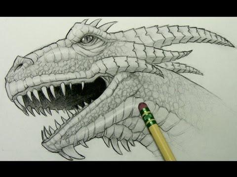 Drawn profile realistic  Dragon a How Draw