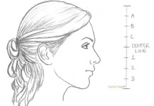 Drawn profile side view Teeth a How to face