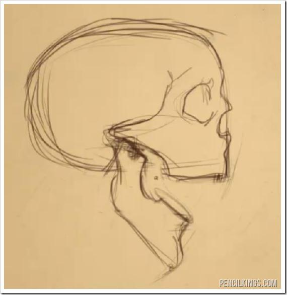 Drawn profile skull Open draw an with from