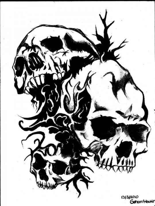 Drawn profile skull Free Skull Skulls Clip Clip