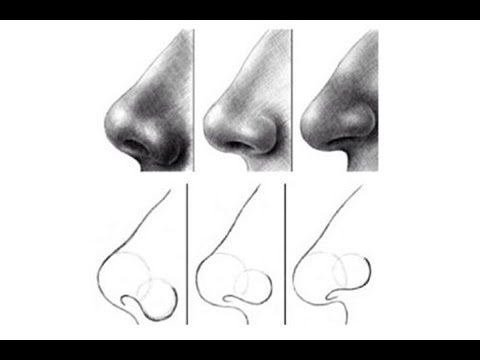 Drawn profile upturned nose 2 draw for YouTube nose