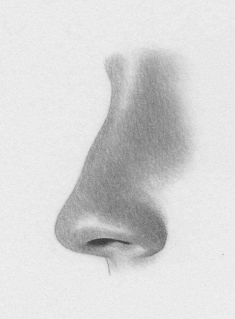 Drawn profile upturned nose Like drawing Draw 25+ ideas