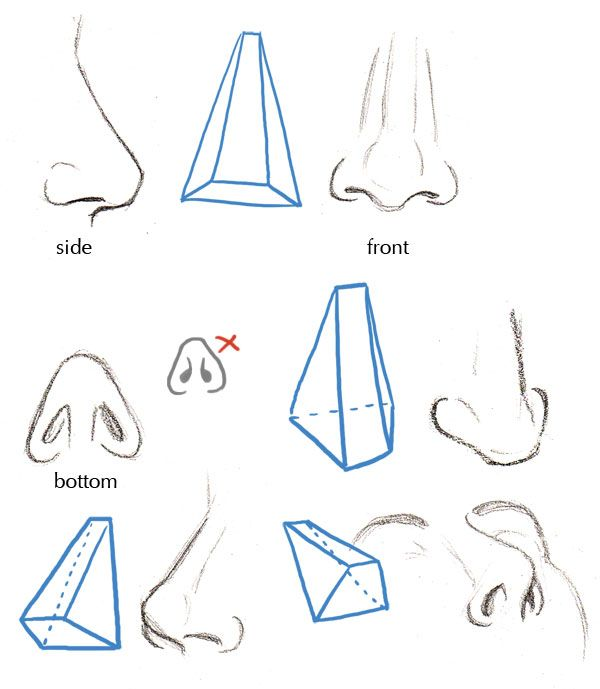 Drawn profile upturned nose Images Human Pin 127 Nose