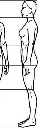 Drawn profile woman's Half Proportions Female neck one