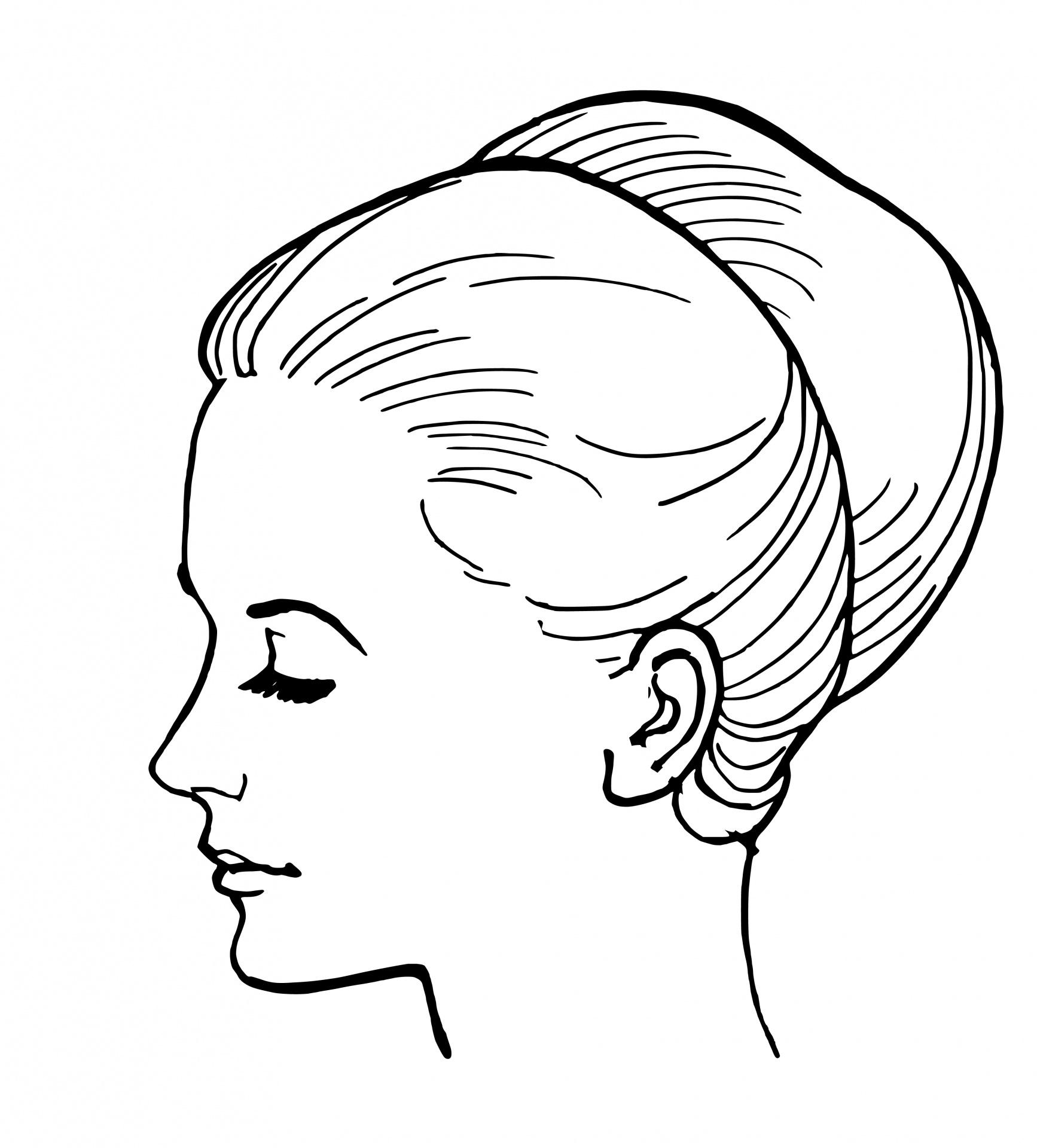 Drawn profile woman's Face Face Woman  Public