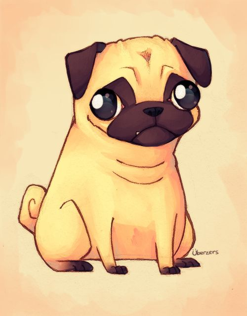 Drawn pug Images pug 43 Uberzers by