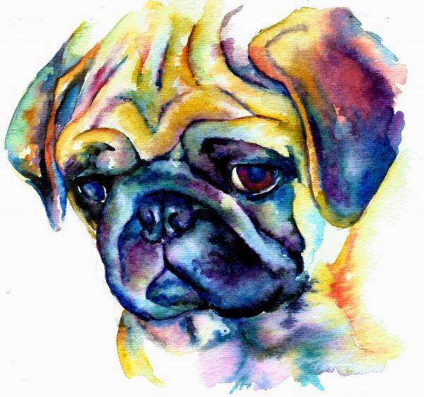 Drawn pug abstract Pug art Blue Blue ideas
