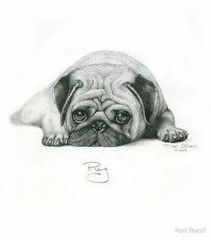 Drawn pug abstract Desenhos Coloring para  ж