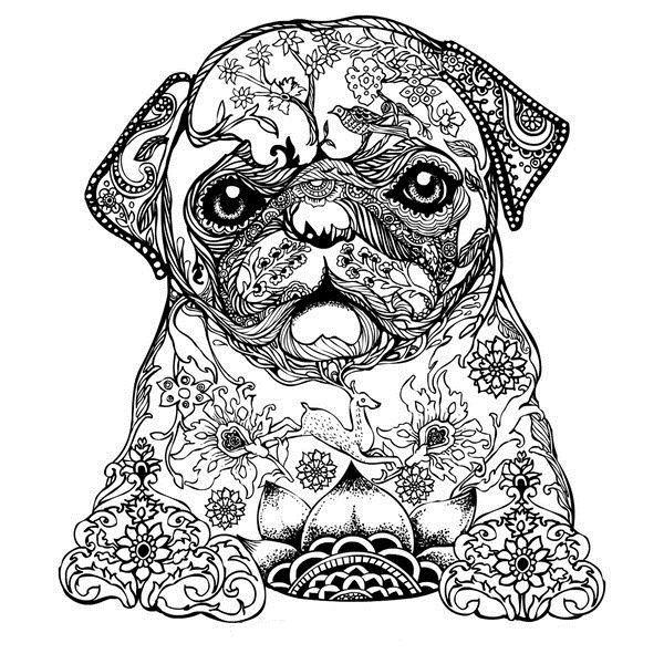 Drawn pug abstract On para Pages pintar Coloring