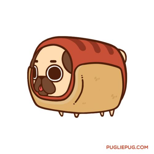 Drawn pug adorable Pug? on images Hot Pinterest