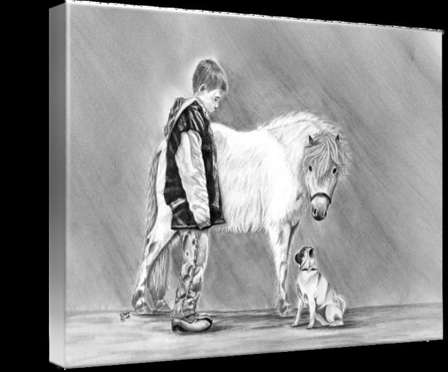 Drawn pug amazing horse  Shari Curiosity Miniature Trio