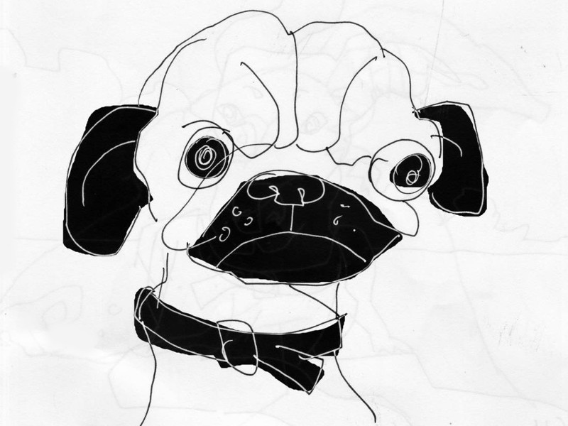 Drawn pug angry O'clock Wine Angry Roads All