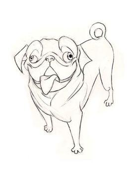 Drawn pug appa TheFlyingDachshund on Pug 1 oranjisama