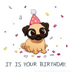 Drawn pug awesome birthday Está and more cumpleaños this
