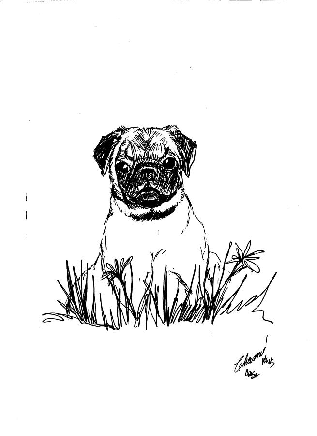 Drawn pug baby pug Drawing Baby by In by