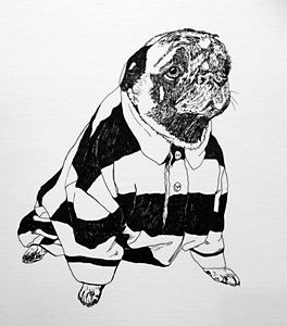 Drawn pug beer Beer Illustration  Drawings Animals