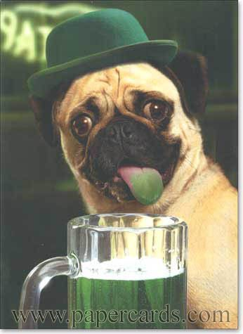 Drawn pug beer More pugs on 60 images
