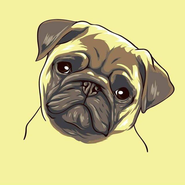 Drawn pug business Journaling on Art Pinterest images