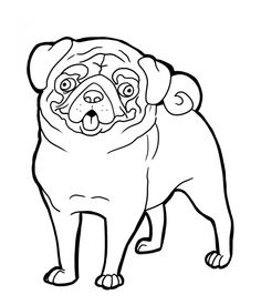 Drawn pug color Page Coloring Pug Ideas Pinterest