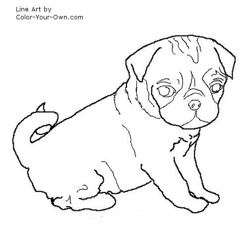 Drawn pug coloring page Pug Puppy Coloring Pug Coloring