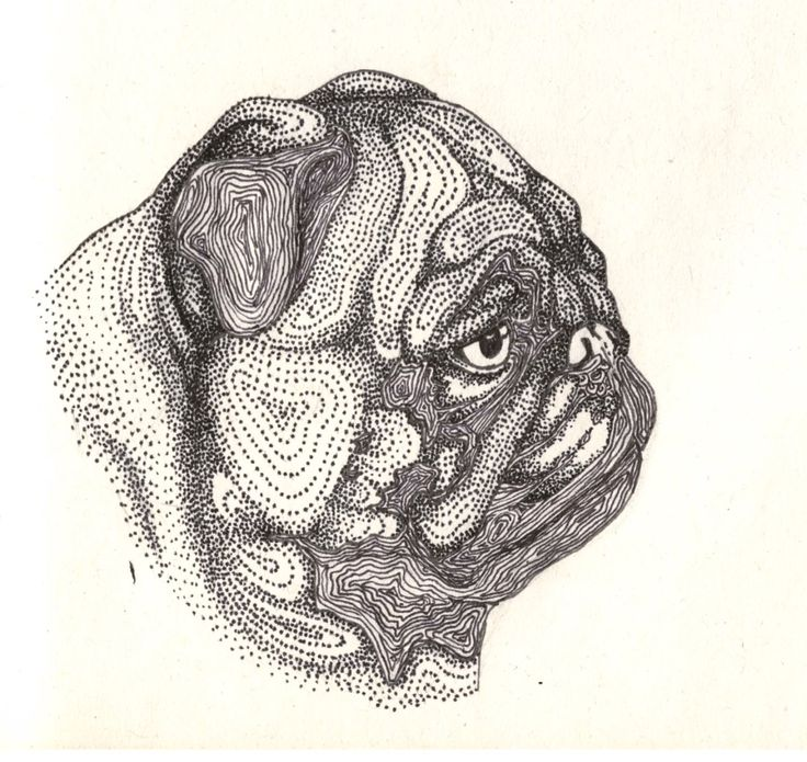 Drawn pug daily DeviantArt 14 Pug Pen cm