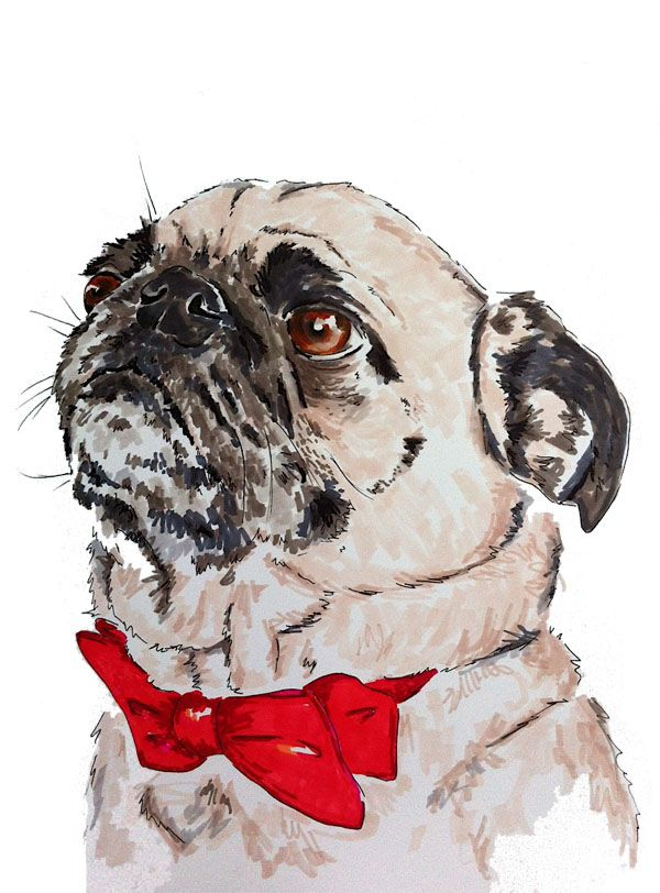 Drawn pug daily 134 best on images Legohead