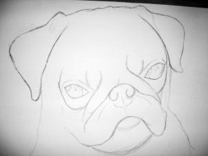 Drawn pug dragoart How Animals a How Realistic