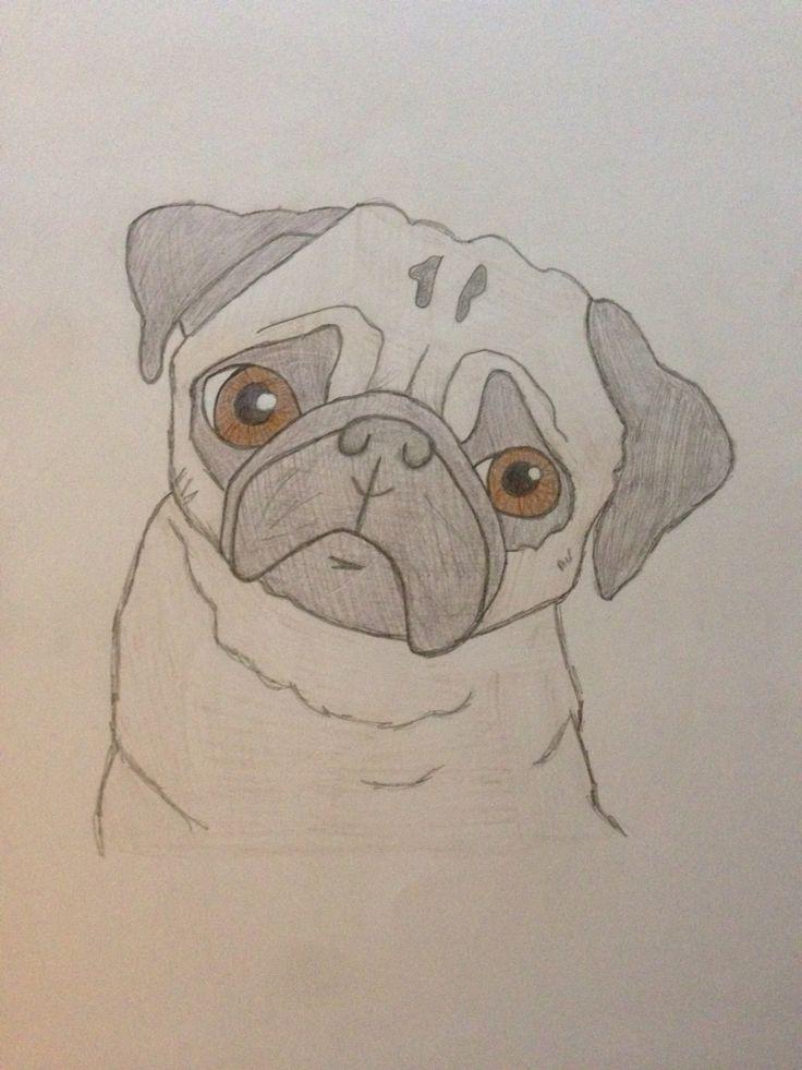 Drawn pug gentleman My on drawing love Pinterest