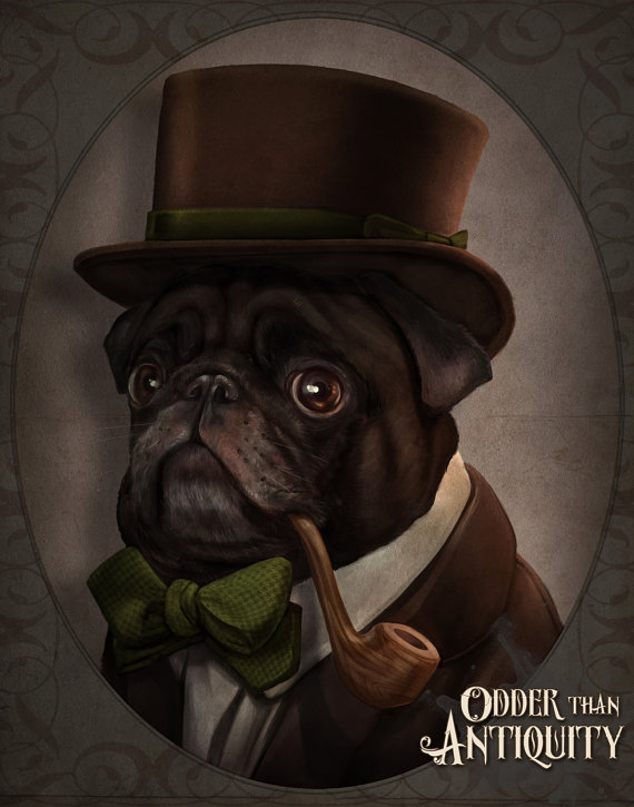 Drawn pug gentleman French Black  Costumed Bulldog