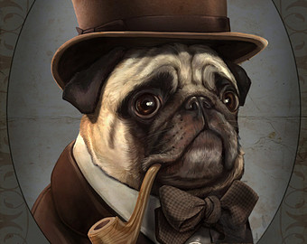 Drawn pug gentleman Winston the Victorian Painted the
