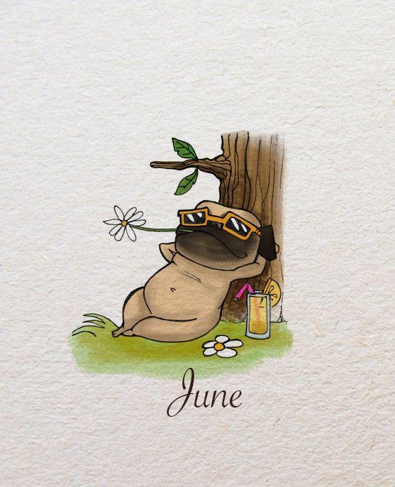 Drawn pug happy More Pugs ideas Pug on